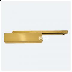 dorma ts93 pb door closers polished brass cam action track. Black Bedroom Furniture Sets. Home Design Ideas