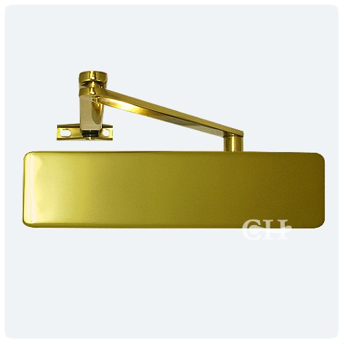 geze ts4000 overhead door closers with backcheck in polished brass pb from cheshire hardware. Black Bedroom Furniture Sets. Home Design Ideas