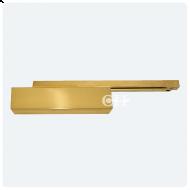 polished brass TS93